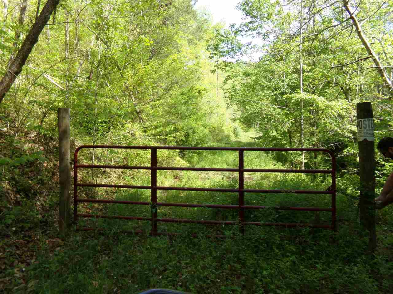 This is a great opportunity to own a large tract of land at an affordable price. 274 wooded acres with double paved road frontage that provides great hunting and access. Cleared cabin site with water and electric available. Theres 3-4 small food plots with stands and feeders, creek and pond site with multiple places to build. If you are looking at an affordable property for recreation or a place to retire, this is a must see.