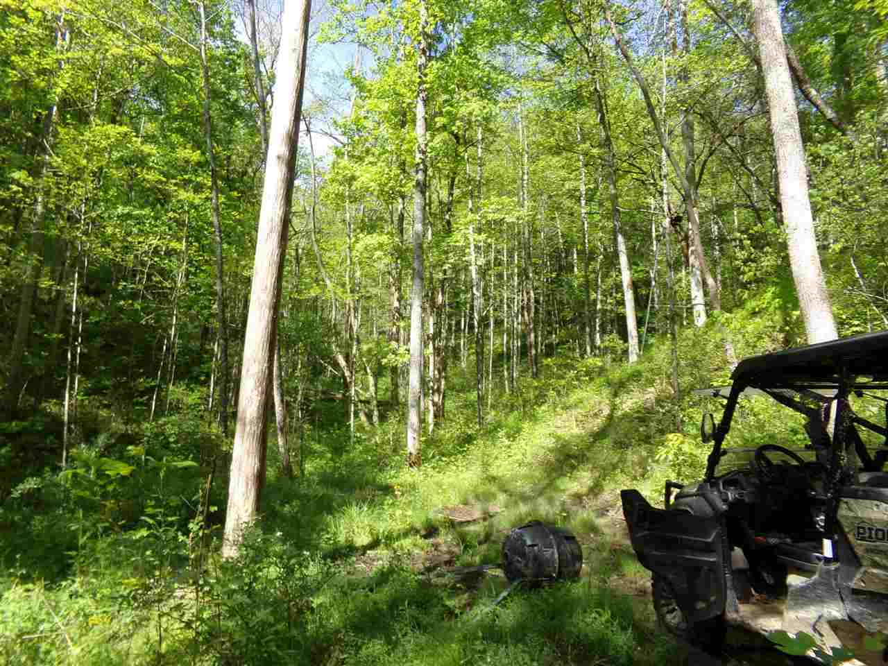 Great opportunity to own a nice size hunting property for the price of building lot. 45.71 acres of wooded land by boundary deed. Great for hunting, atv riding, camping etc.