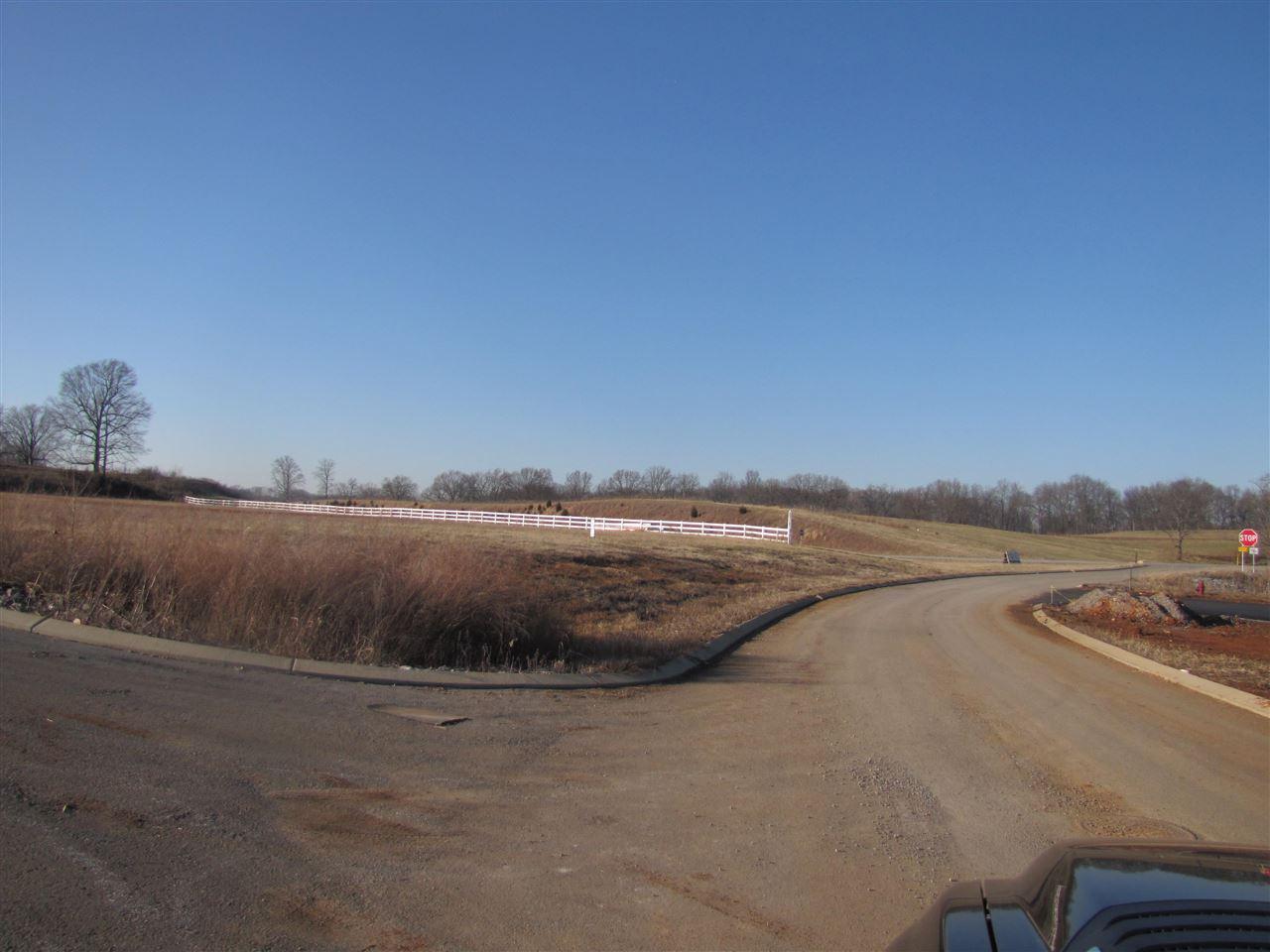 Lot #3 1800 Veterans Memorial Hwy., Scottsville, KY 42164