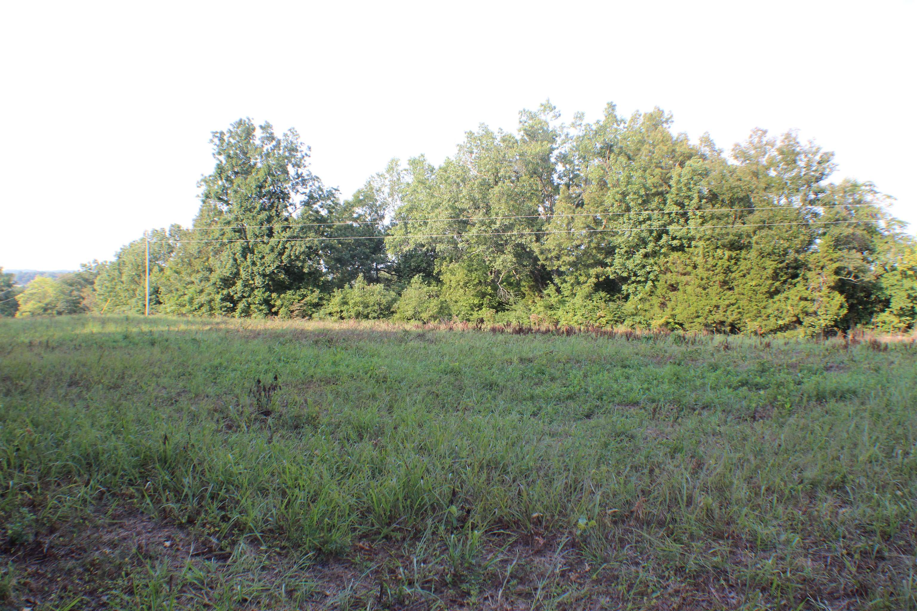 0 Homer Cemetery Road, Russellville, KY 42276