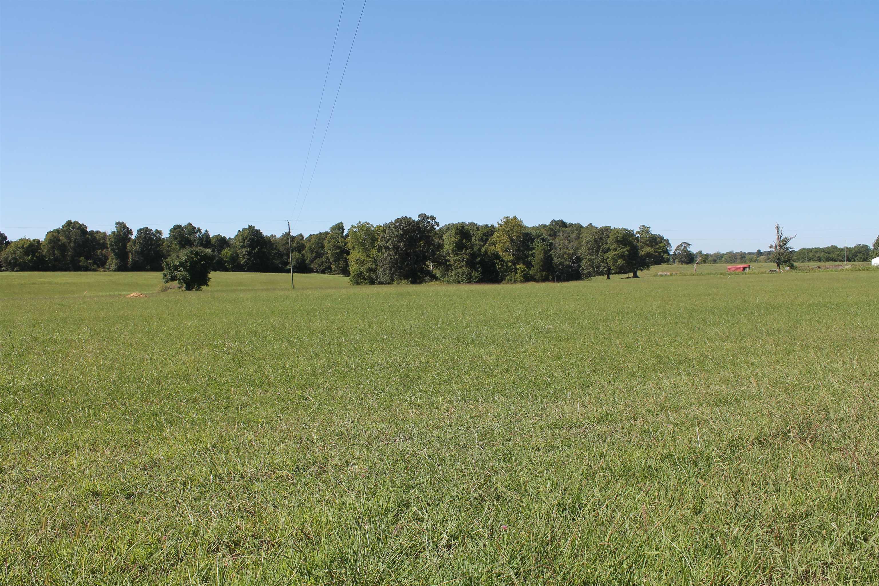 0 Browning Road, Auburn, KY 42206