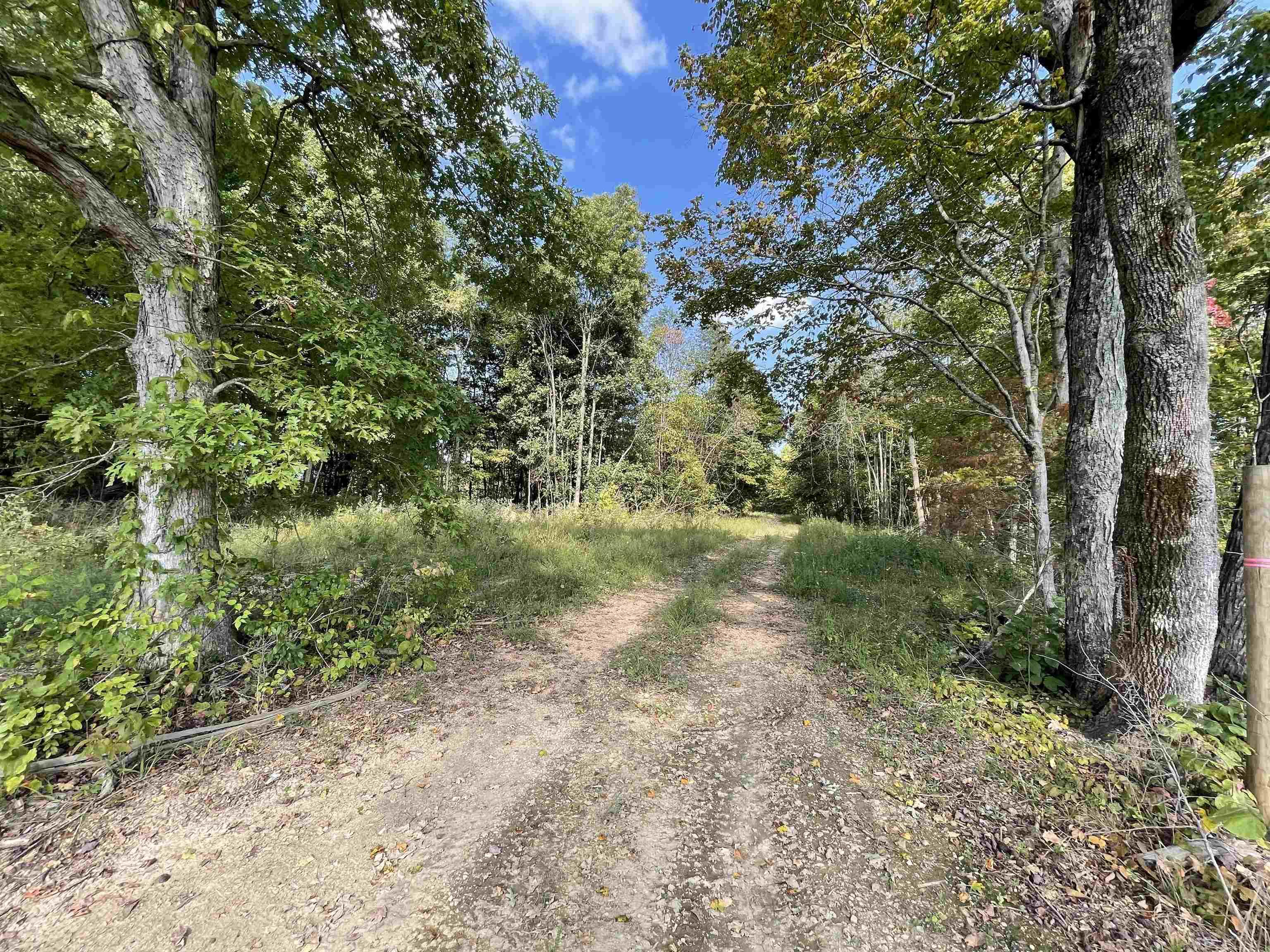 209± Acres Halifax Road, Scottsville, KY 42164